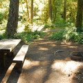 One of eight walk-in campsites at La Wis Wis Campsites..- La Wis Wis Campsites (Loop H)