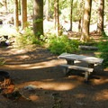 One of four walk-in campsites right along the Ohanapecosh River at Ohanapecosh Campground.- Ohanapecosh Campground