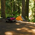 Typical campsite at Ohanapecosh Campground.- Ohanapecosh Campground