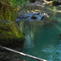 Ohanapecosh River swimming hole.- Ohanapecosh Campground