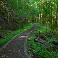Silver Falls/Ohanapecosh Hot Springs Loop Trail.- Silver Falls and Hot Springs Loop Trail
