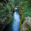 Ohanapecosh River chasm.- Silver Falls and Hot Springs Loop Trail