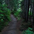 The 0.3 mile Box Canyon interpretive loop trail.- Box Canyon Overlook