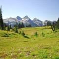 Paradise Park and the Tatoosh Range.- Skyline Trail Hike