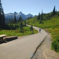 Paved section of Skyline Trail leading up to Myrtle Falls.- Paradise Park, Myrtle Falls