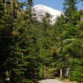 Cougar Rock Campground with a view of Mount Rainier's second highest summit, Point Success (14,158').- Cougar Rock Campground
