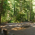 One of five large group campsites at Cougar Rock Campground.- Cougar Rock Campground