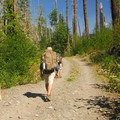 Hiking on the closed section of the Westside Road along Tahoma Creek.- Gobblers Knob + Lake George Hike