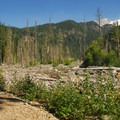 A glimpse of Mount Rainier (14,411')  from Westside Road.- Gobblers Knob + Lake George Hike