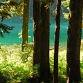 George Lake from designated campsites.- Gobblers Knob + Lake George Hike