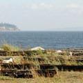Looking north toward Jefferson Beach from Fay Bainbridge Park.- Fay Bainbridge Park