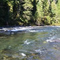 The North Santiam River.- Whispering Falls Campground
