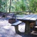 A typical campsite at Whispering Falls Campground.- Whispering Falls Campground