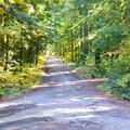 Fall foliage at Whispering Falls Campground.- Whispering Falls Campground