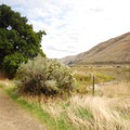 The Pinnacles Trail, an old road from the Murtha Ranch.- John Day River, Pinnacles Trail