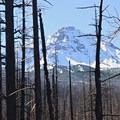 Pole Creek Fire and North Sister (10,085').- Demaris Lake
