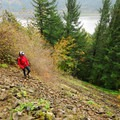Cape Horn Lower Trail.- Cape Horn Loop Hike