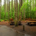 A double site at Lower Falls Campground.- Lower Falls Campground