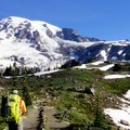 Mount Rainier (14,411 ft) from Paradise Park enroute to Camp Muir.- Mount Rainier National Park
