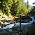 Silver Falls Gorge on the Ohanapecosh River.- Mount Rainier National Park