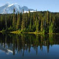Mount Rainier (14,411 ft) and Reflection Lake.- Mount Rainier National Park