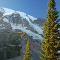 Mount Rainier (14,411 ft) from the Nisqually Vista Trail.- Mount Rainier National Park