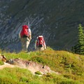 Hikers along Paradise Park's Skyline Trail.- Mount Rainier National Park