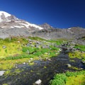 Mount Rainier (14,411 ft) from below Paradise Glacier.- Mount Rainier National Park