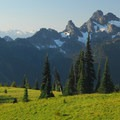 Cowlitz Chimneys and Goat Rocks beyond from Mount Rainier's Sunrise Point.- Mount Rainier National Park