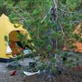Campsite just below treeline on the Mount St. Helens Worm Flows Route.- Mount St. Helens Worm Flows Hike