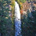 Mill Creek Waterfall.- Prospect State Scenic Viewpoint