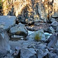"""""""Avenue of Giant Boulders.""""- Prospect State Scenic Viewpoint"""