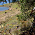 Near Ivan Oakes Campground.- North Shore Trail Mountain Bike Ride