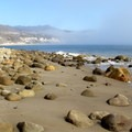 Looking east from the top of El Capitan point on a calm and foggy morning.- El Capitan State Beach