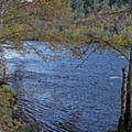 The Rogue River.- Rogue Elk Camground