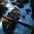 Elbow Room Rapid.- Ohanapecosh River: Secret Camp to La Wis Wis Campground