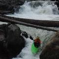 Bob's Falls.- White Salmon River
