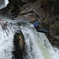 Little Brother.- White Salmon River