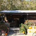 El Capitan Canyon's market offers food, wine, camping odds-and-ends, as well as a cafe and espresso bar. It is open seven days a week.- El Capitan Canyon Nature Resort