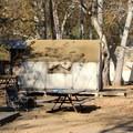 Safari tents underneath a grove of canyon sycamores.- El Capitan Canyon Nature Resort