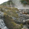 Steam rises from the ledge above the pools as the hot water trickles through orange and green algae.- Kirkham Hot Springs
