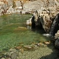 The river is spectacularly clear.- Kirkham Hot Springs