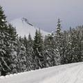 Mount Hood (11,249') from the Iron Creek Trail.- Iron Creek Ski + Snowshoe Trail