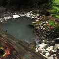 The lowest pool is often coolest and the least busy.- Terwilliger Hot Springs