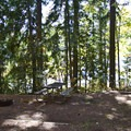 A site with a glimpse of Lookout Point Reservoir through the trees.- Ivan Oakes Campground