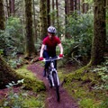 Mountain biking the Siltcoos Lake Trail.- Siltcoos Lake Trail