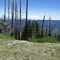 Grizzly Peak in the spring- Grizzly Peak