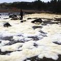 Fogarty Creek sea foam.- Fogarty Creek State Recreation Site