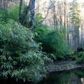 Part of the extensive gardens.- Belknap Hot Springs