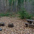 The sites that are farther from the river gain more privacy.- Belknap Hot Springs Campground
